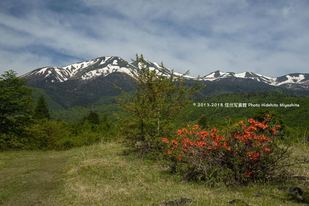 乗鞍岳を望む20180605-_DSC6172