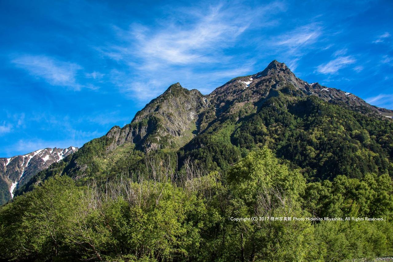 初夏の明神岳
