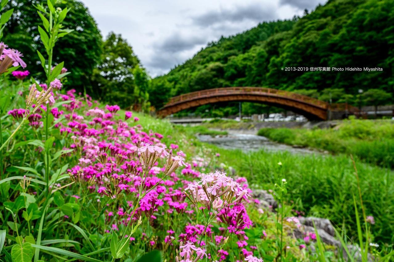 奈良井川にて