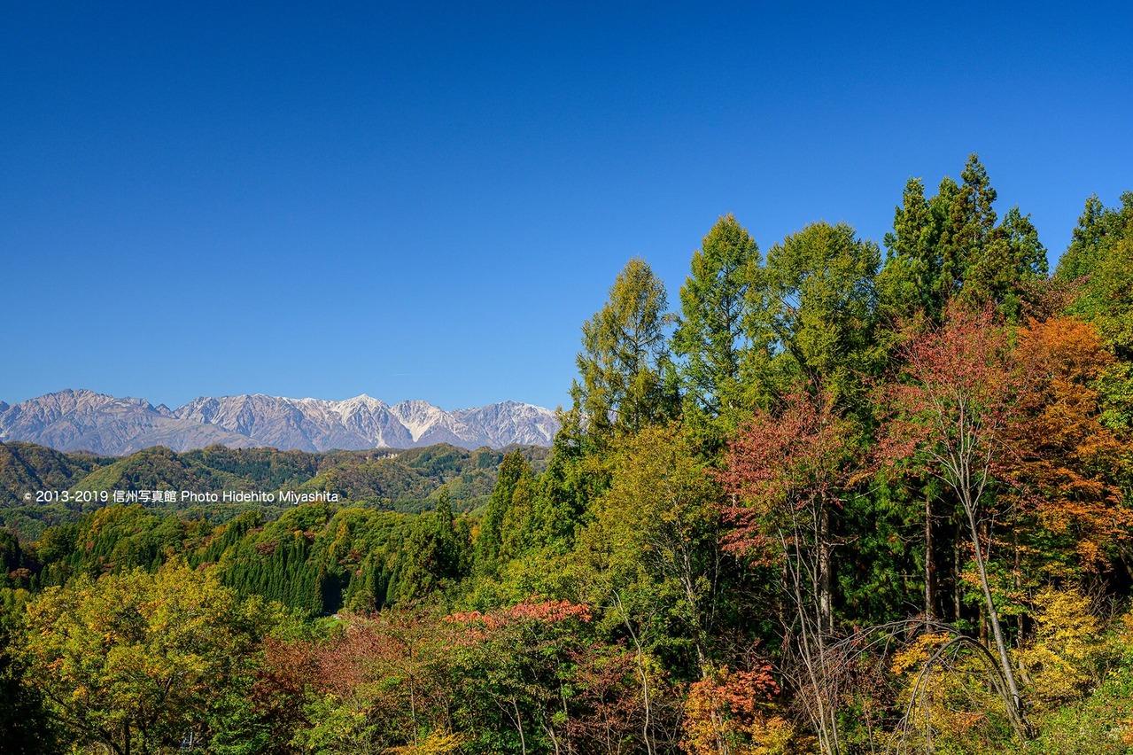 里山の紅葉と白馬三山