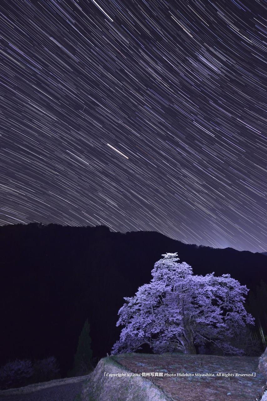 星夜の駒つなぎ