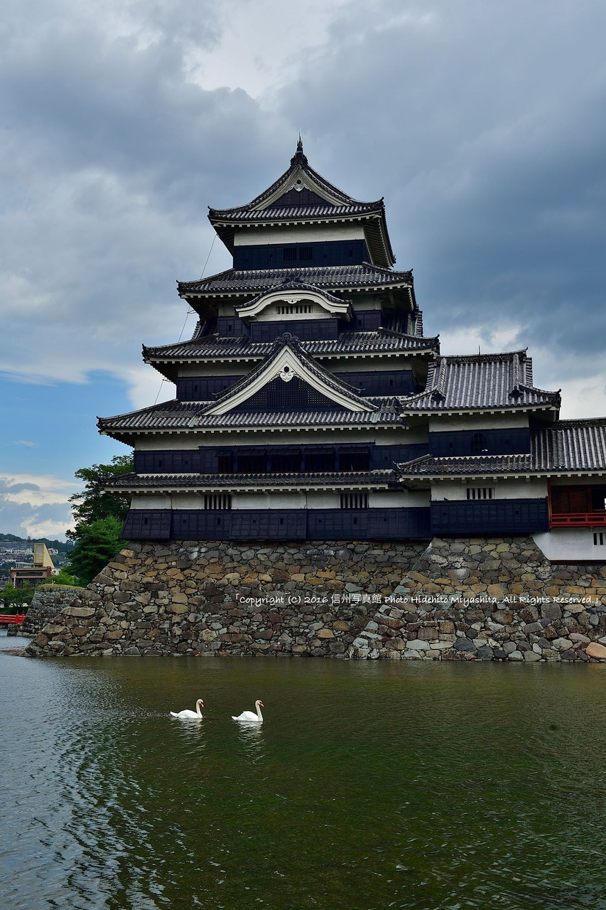 松本城を従えて