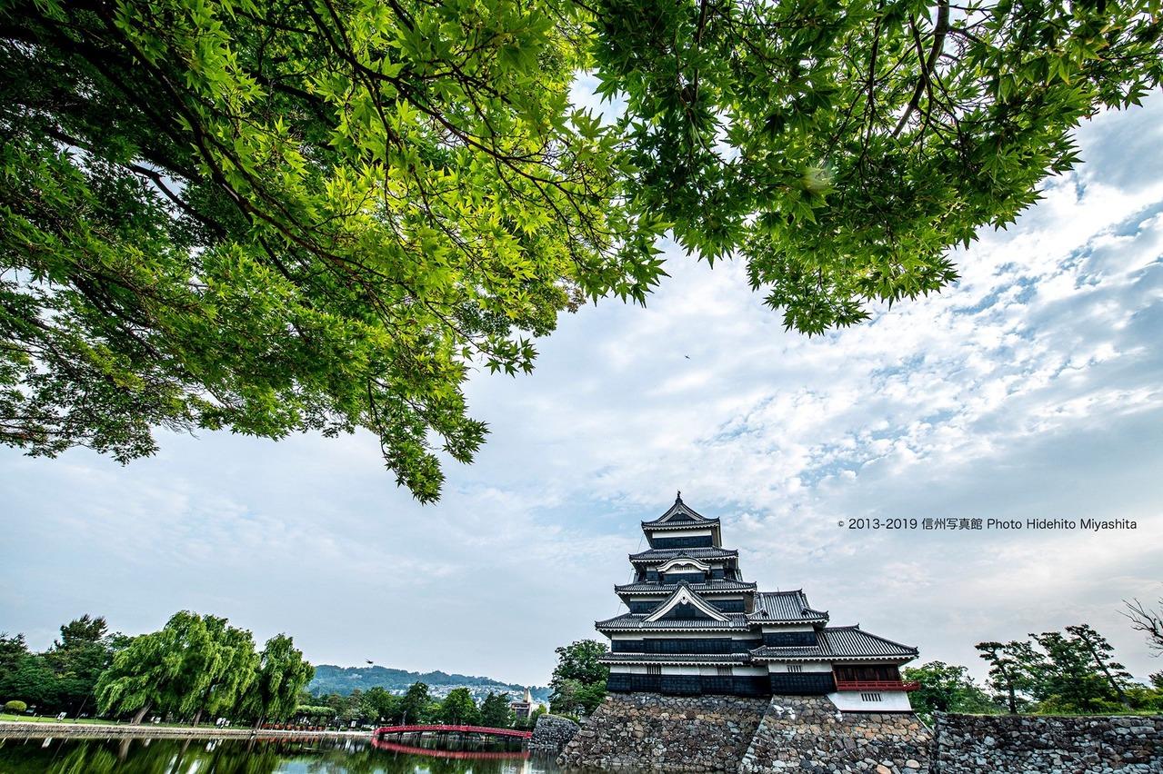 楓と松本城