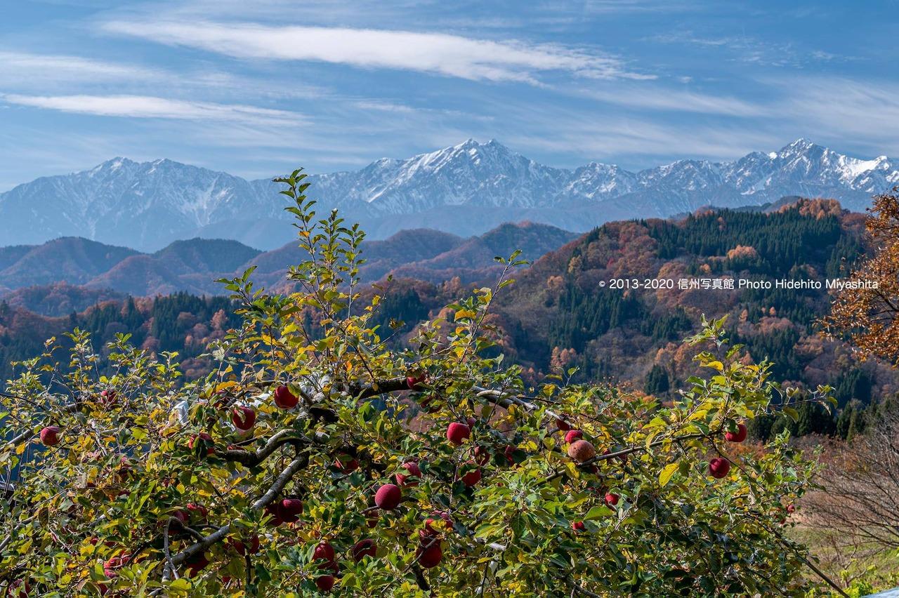 林檎と仁科三山