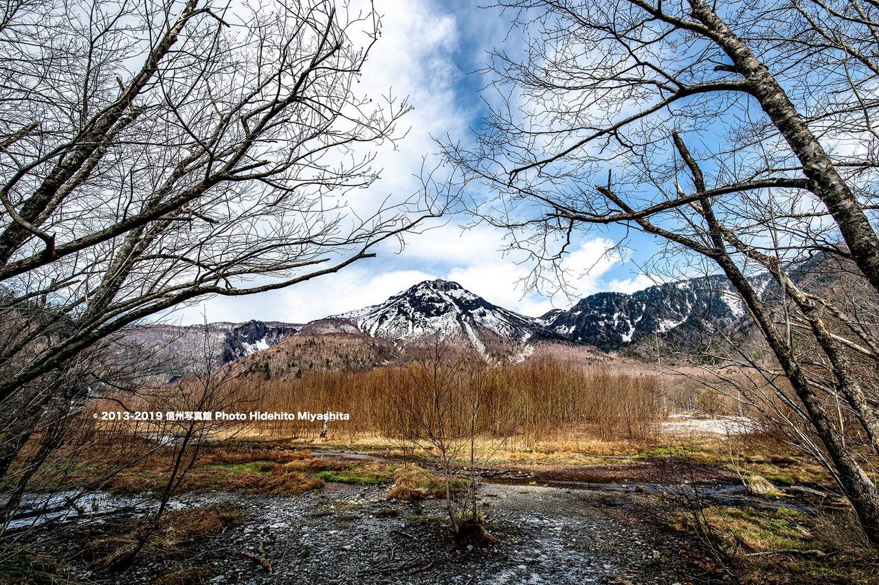 樹々の間の焼岳