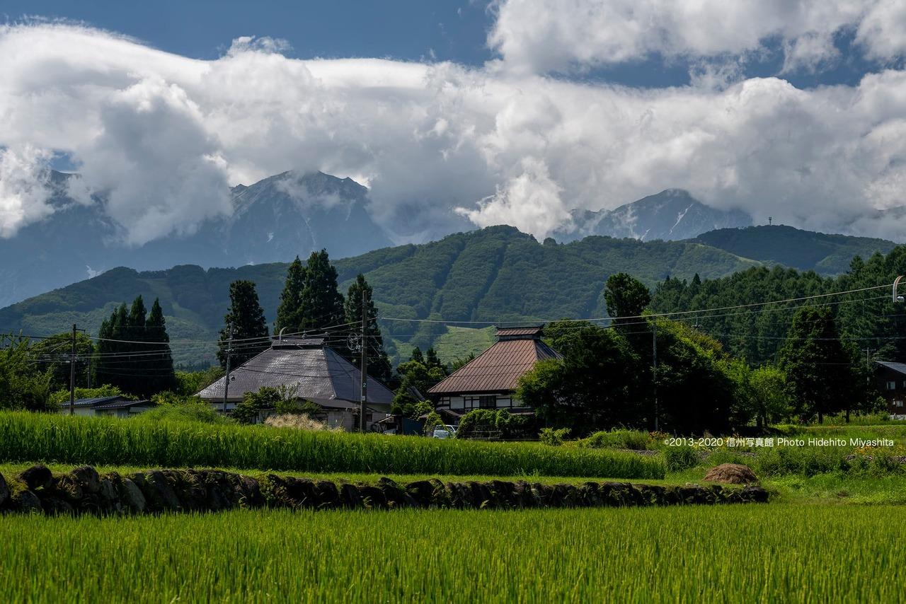 農村の夏風景