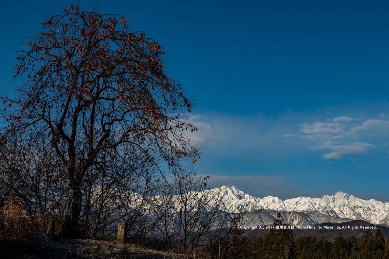 長閑な初冬の風景