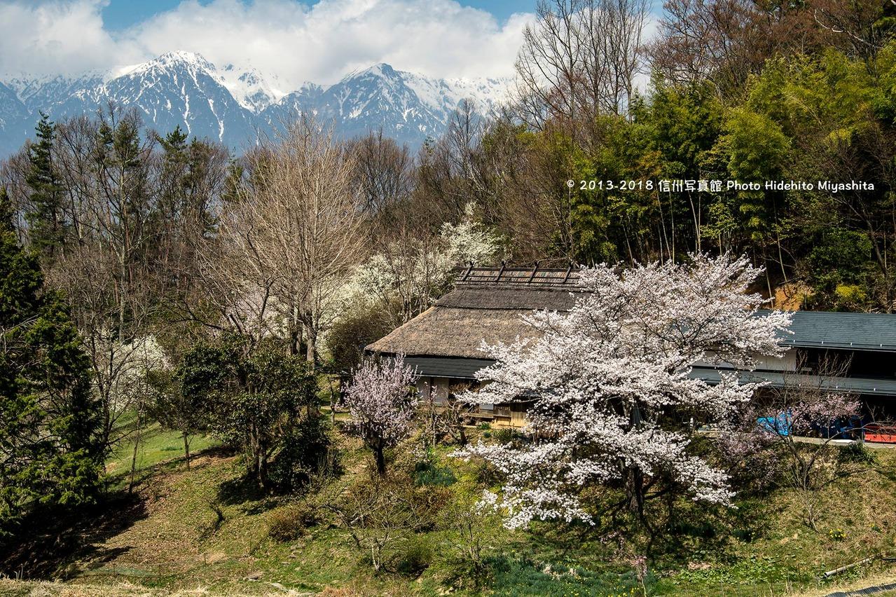 古民家の春