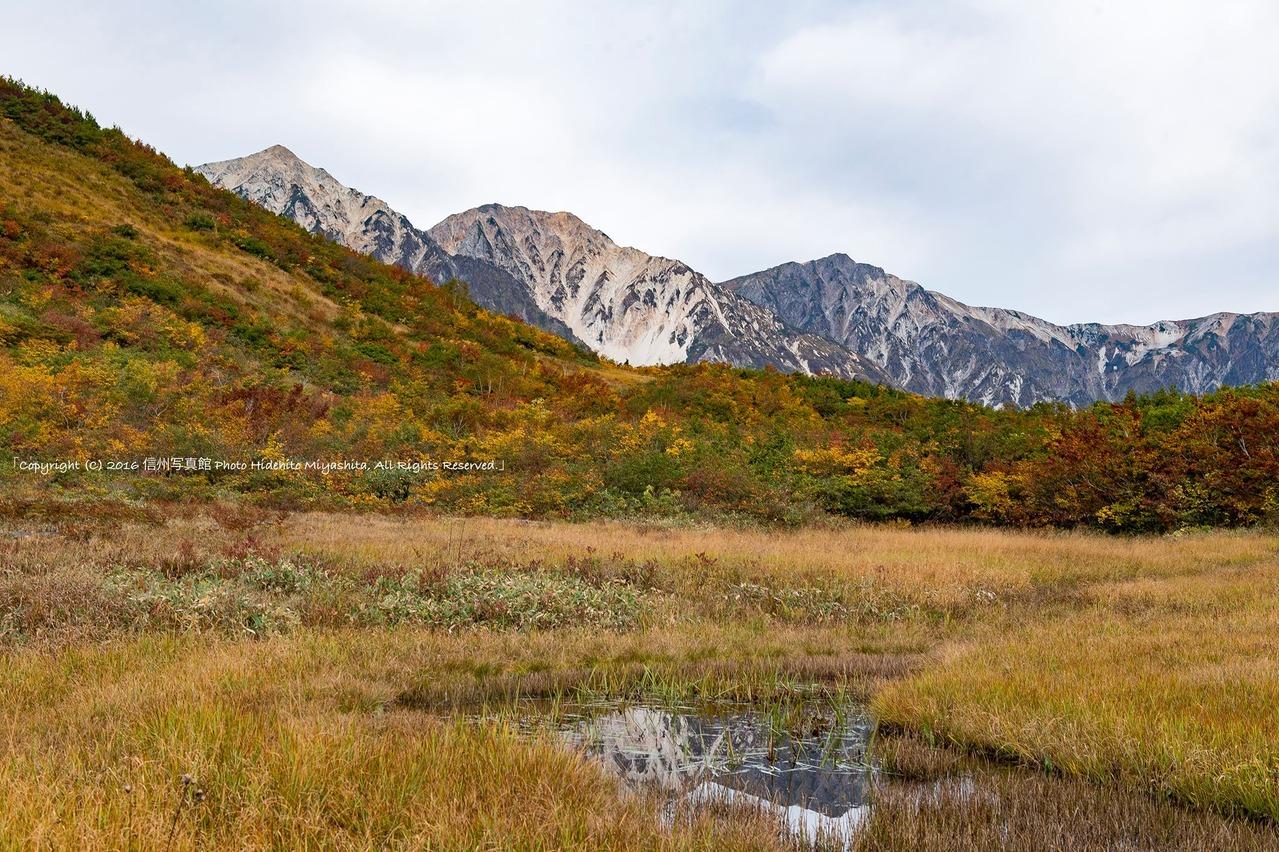 鎌池湿原の秋