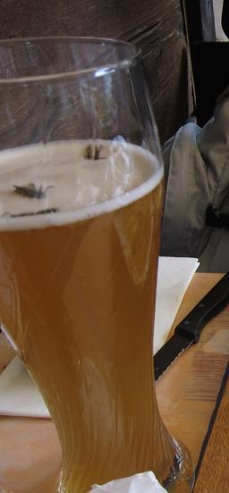 ビールに蜂