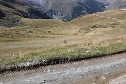 自転車山下り
