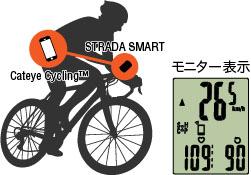 image_mirroring2_jpのコピー
