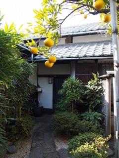 旧山川邸 2