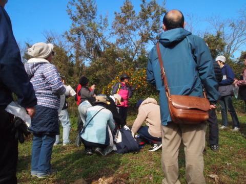 盛り上がったwalkwalk地域探検ツアー