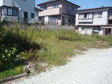 赤坂・61坪・住宅用地・外観2