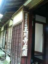 DCF_0069