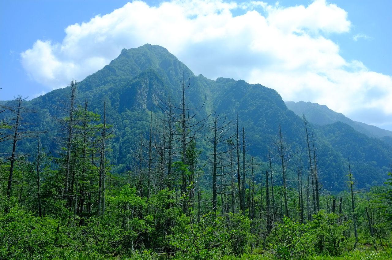 summer_mountain_010