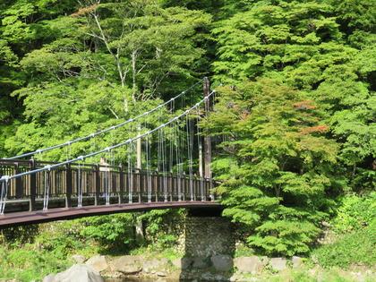 2018夏・紅の吊橋(横)