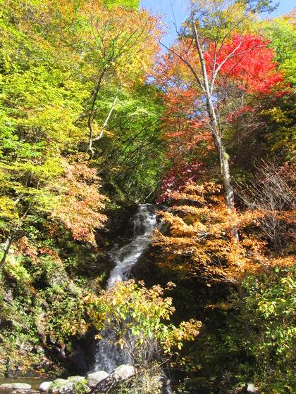 2012年白滝の紅葉2