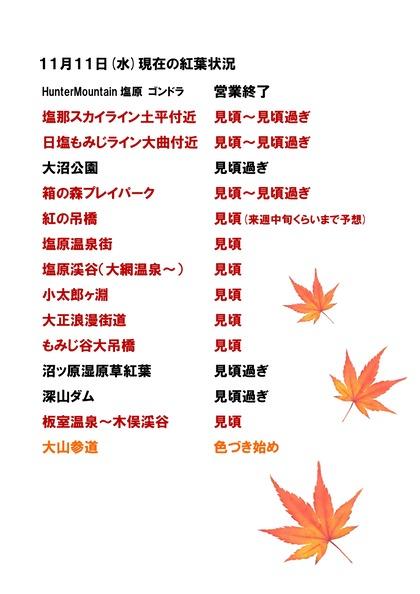 紅葉情報11月11日_page-0001