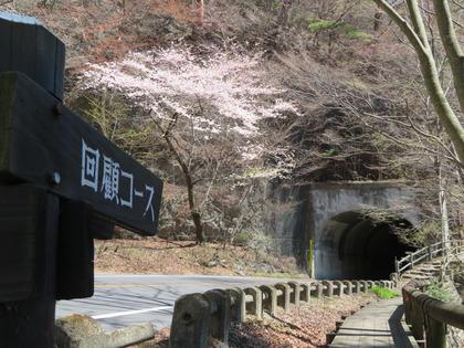 190416猿岩トンネル