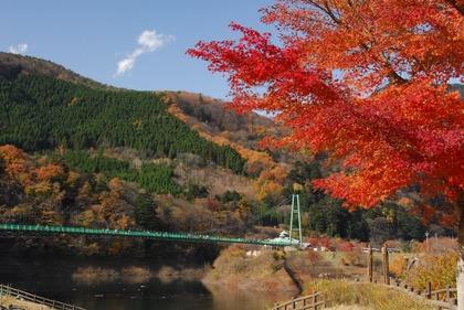 もみじ谷大吊橋紅葉 (2)