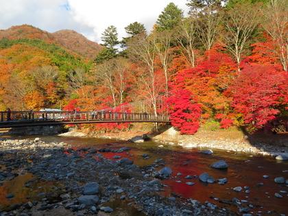 塩原温泉 『紅葉が素晴らしいとテレビに出ました』