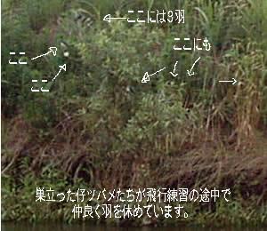 1b2c05b1.jpg
