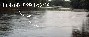 38a6218f.jpg