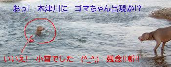 ff635769.jpg