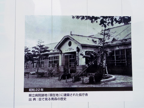 IMGP4620