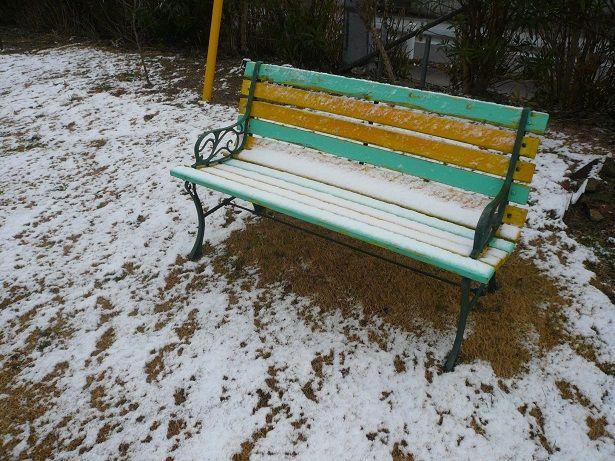 P1060377雪20
