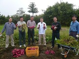 2013さつまいもと落花生の収穫祭