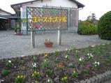 YHの花壇