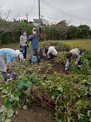 5IMG_20201011_091316.jpgさつまいもの収穫祭