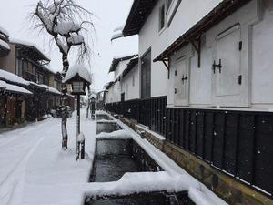 冬瀬戸川と白壁土蔵