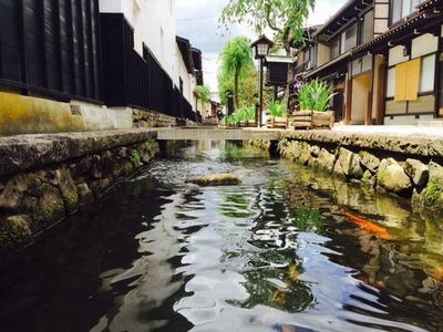 瀬戸川20160527
