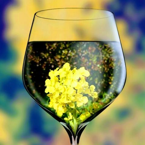 グラスの中の春