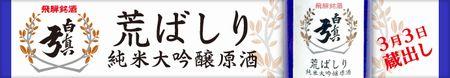 b160224_arabasiri-yokoku