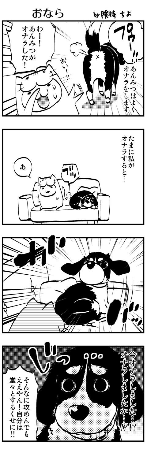 犬猫11 3