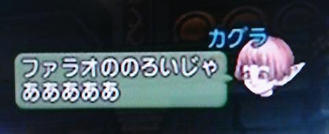 DSC_1345