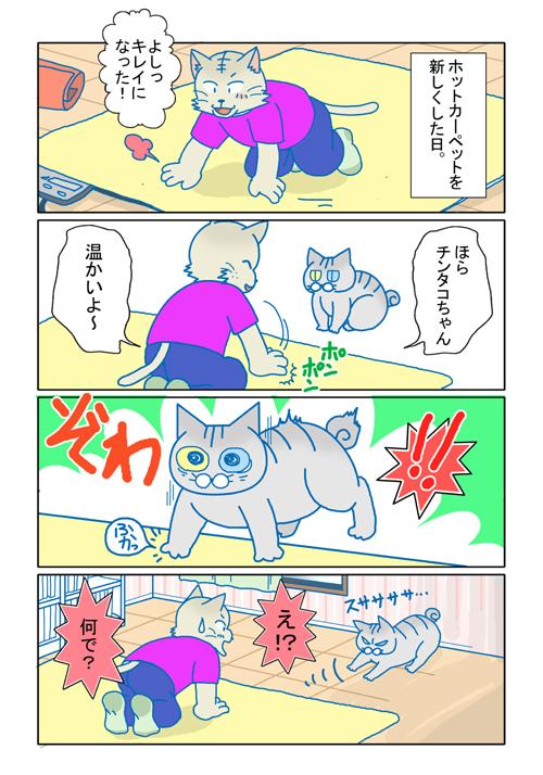 猫と絨毯。