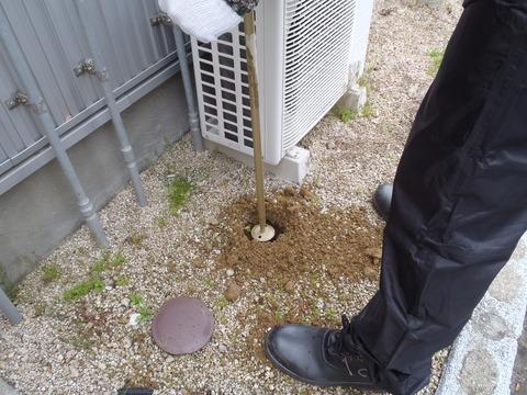 宗像市シロアリベイト工法土壌埋没