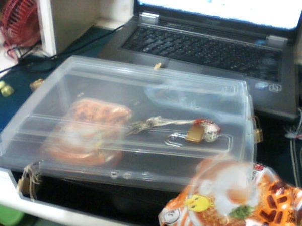 過食症 食べ物 高カロリー