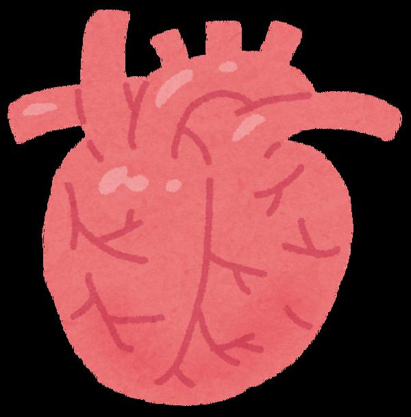 心臓 マラソン 痛み
