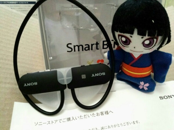 Sony B-trainer