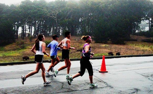 マラソン スピード練習