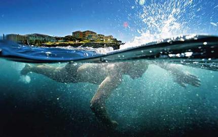 トライアスロン 水泳 死亡事故