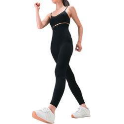 ウォーキング 50km 運動不足 ダイエット