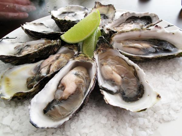 生牡蠣 ノロ 生食 牡蠣 食べ方 まずい